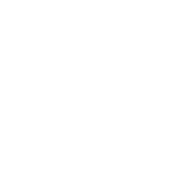 Premium Guitar Service 